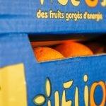 MMD warehouse oranges